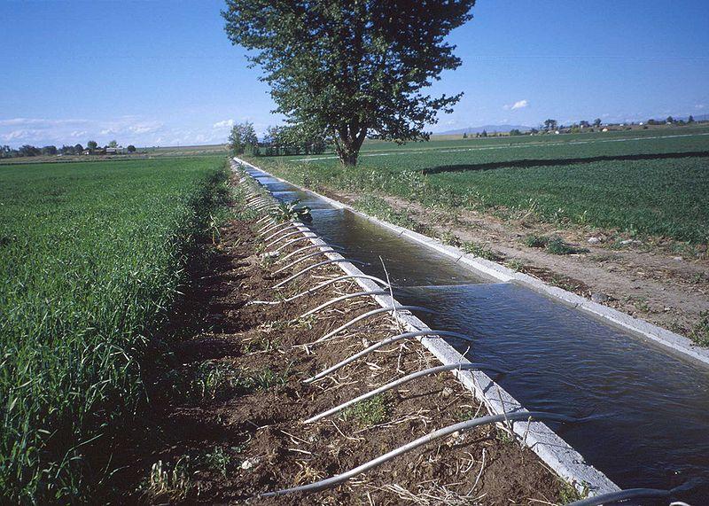 管により畑に給水する灌漑施設