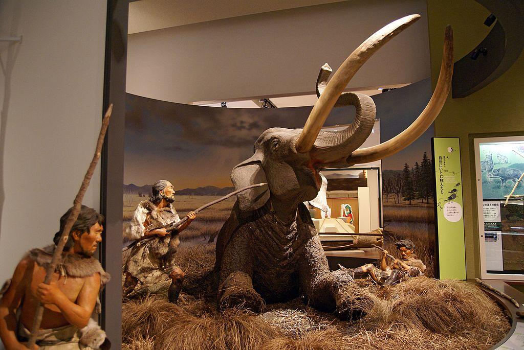 旧石器時代の人びとの狩猟のようすを示すジオラマ