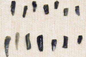 約13,000 - 12,000年前の黒曜石でできた細石刃
